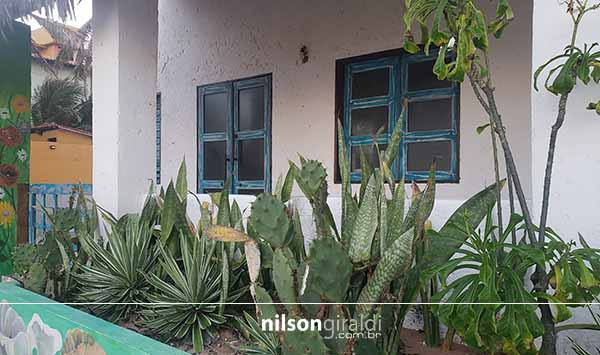 casa cactus new L