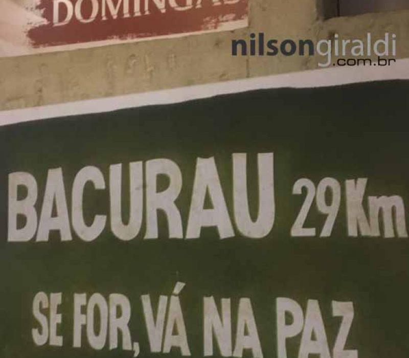 bacurauLs